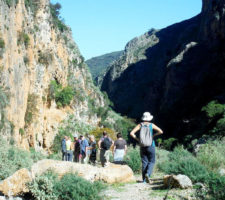 Nordic Walking in Crete