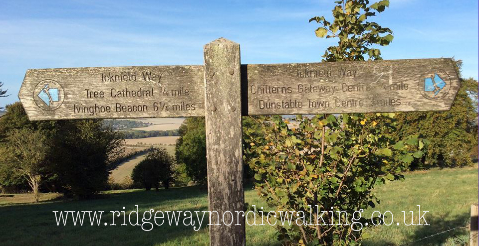 Nordic Walk the Icknield Way - Ivinghoe Beacon to Dunstable Downs