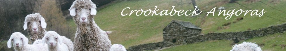 Crookabeck Special, Ullswater (includes visit to Angora Farm)